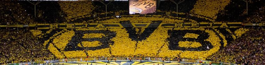 Der Videobeweis in der Bundesliga  eine rechtliche Würdigung