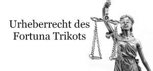 Urheberrechtsstreit zwischen Kunstprofessorin und Fortuna Düsseldorf
